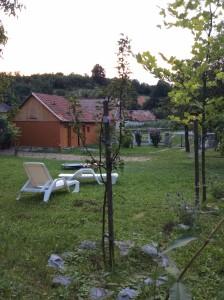 de tuin vanaf het kleine terras